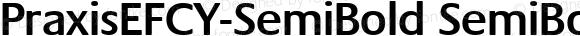 PraxisEFCY-SemiBold SemiBold 001.000