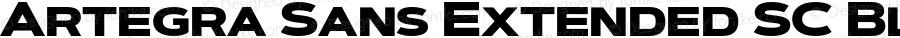 Artegra Sans Extended SC Black Version 1.00;com.myfonts.easy.artegra.artegra-sans.sc-extend-black.wfkit2.version.4Kqs
