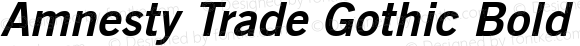 Amnesty Trade Gothic Bold No. 2 Oblique Version 1.00; 2008
