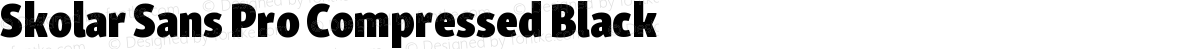 Skolar Sans Pro Compressed Black