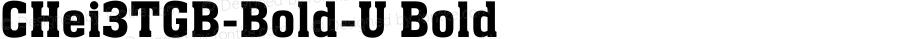 CHei3TGB-Bold-U Bold 2.50