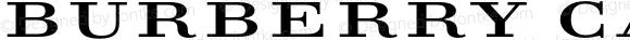 Burberry Capitals Small Regular Version 1.000