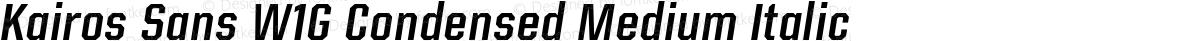 Kairos Sans W1G Condensed Medium Italic