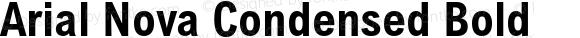 Arial Nova Condensed Bold