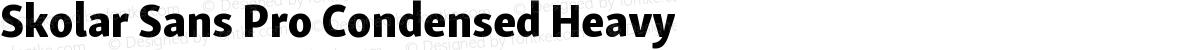Skolar Sans Pro Condensed Heavy