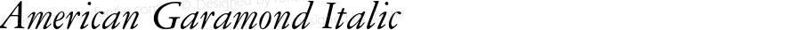 American Garamond Italic 2.0-1.0