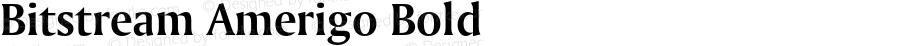 Bitstream Amerigo Bold 2.0-1.0