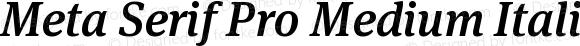 Meta Serif Pro Medium Italic