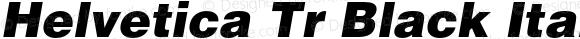 Helvetica Tr Black Italic