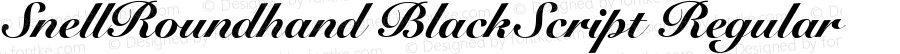 SnellRoundhand BlackScript Regular V.1.0
