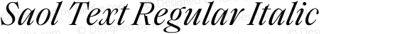 Saol Text Regular Italic