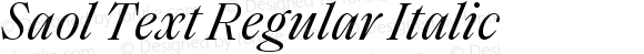 Saol Text Regular Italic