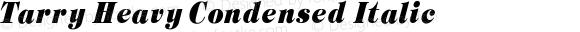 Tarry Heavy Condensed Italic