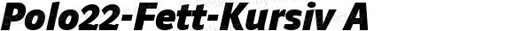 Polo22-Fett-Kursiv A 1.0 Mon Sep 19 15:43:00 2005