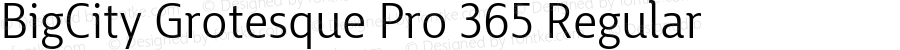 BigCity Grotesque Pro 365 Regular Version 1.0