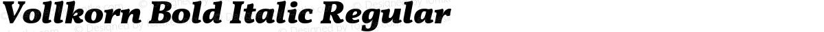 Vollkorn Bold Italic Regular
