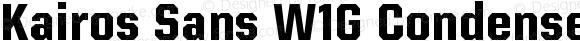 Kairos Sans W1G Condensed Bold
