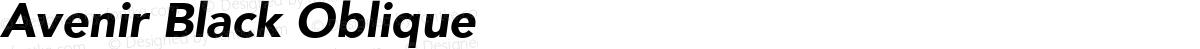 Avenir Black Oblique