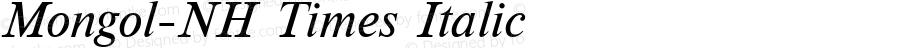 Mongol-NH Times Italic