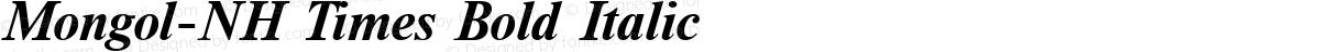 Mongol-NH Times Bold Italic