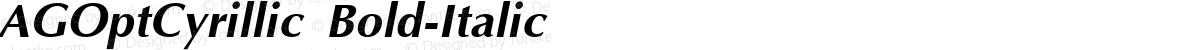 AGOptCyrillic Bold-Italic