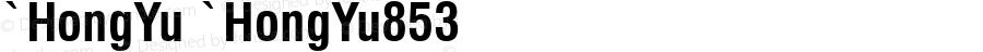 `HongYu `HongYu853 Version 1.00 April 22, 2017, initial release