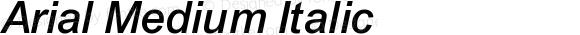 Arial Medium Italic 4.0