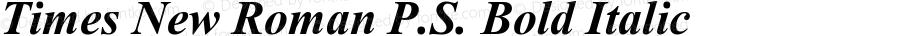 Times New Roman P.S. Bold Italic 2