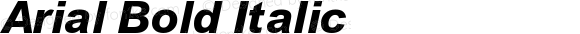 Arial Bold Italic 4.0