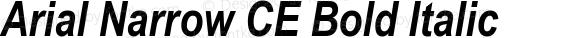 Arial Narrow CE Bold Italic 001.004