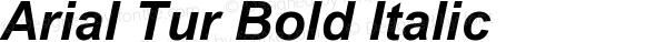 Arial Tur Bold Italic 001.005