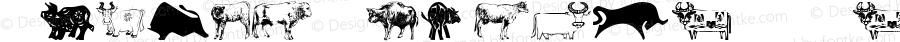 Animal-ArtHouse16 Regular Version 1.000 2011 initial release