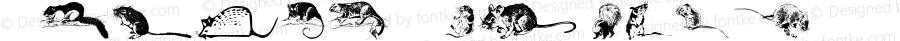 Animal-ArtHouse27 Regular Version 1.000 2011 initial release