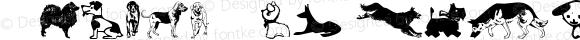 Animal-ArtHouse30 Regular Version 1.000 2011 initial release