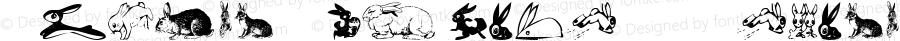 Animal-ArtHouse21 Regular Version 1.000 2011 initial release