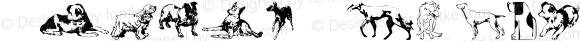 Animal-ArtHouse31 Regular Version 1.000 2011 initial release