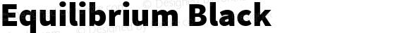 Equilibrium Black