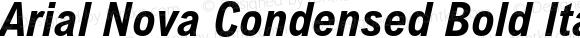 Arial Nova Condensed Bold Italic