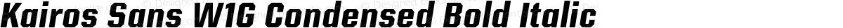 Kairos Sans W1G Condensed Bold Italic