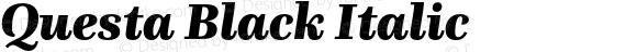 Questa Black Italic