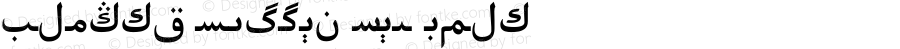 Alpida Uyghur Tuz Bold Version 4.00