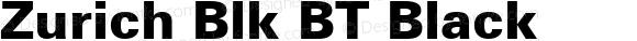 Zurich Blk BT Black Version 2.1