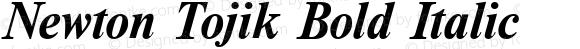 Newton Tojik Bold Italic