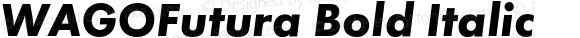 WAGOFutura Bold Italic