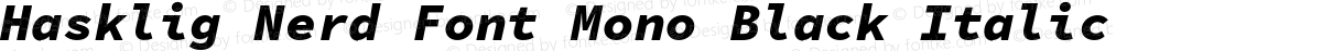 Hasklig Nerd Font Mono Black Italic