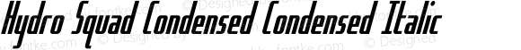 Hydro Squad Condensed Condensed Italic