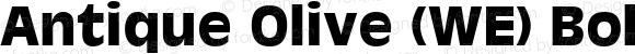 Antique Olive (WE) Bold 19: 91118