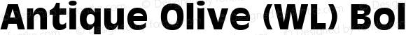 Antique Olive (WL) Bold 19: 91118