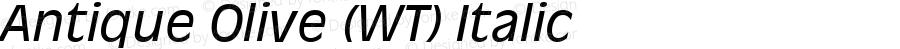 Antique Olive (WT) Italic 19: 91846