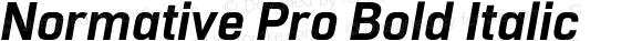 Normative Pro Bold Italic
